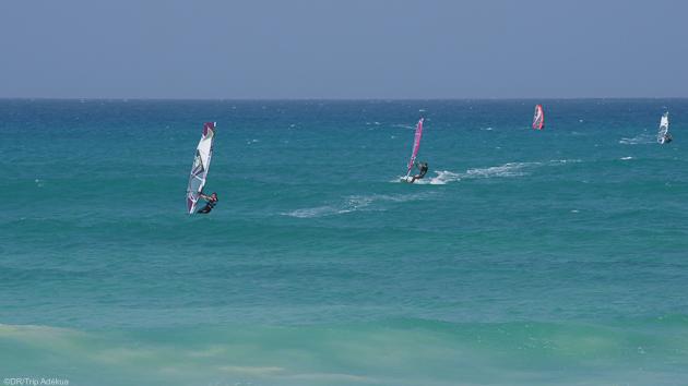 Une croisière de rêve aux Baléares autour de l'île d'Ibiza