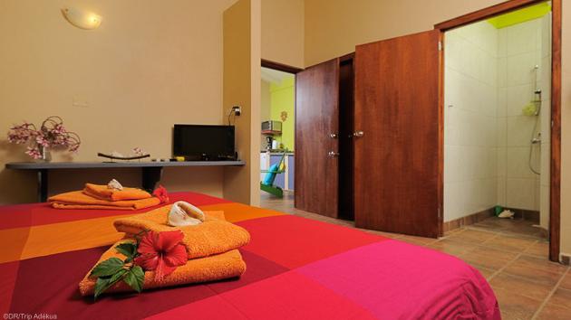 Une guest house avec piscine pour votre windsurf trip à Bonaire