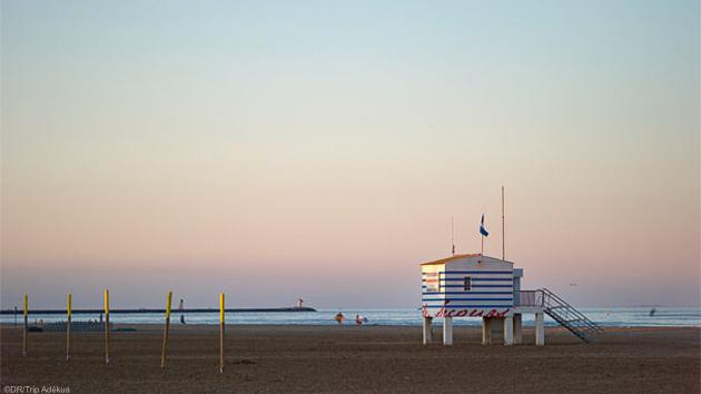 Un séjour windsurf de rêve pour progresser et profiter de la mer