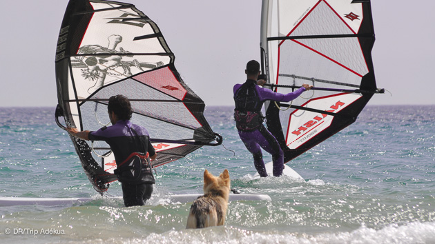 un spot de windsurf pour tous niveaux près de tarifa