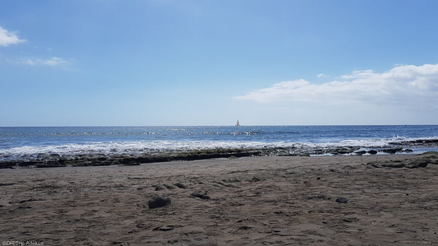 Découvrez l'île de Tenerife pendant votre séjour windsurf aux Canaries